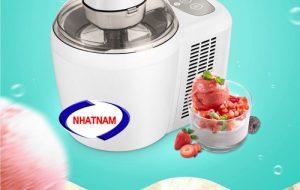 Máy làm kem gia đình (NNTP-PA02)