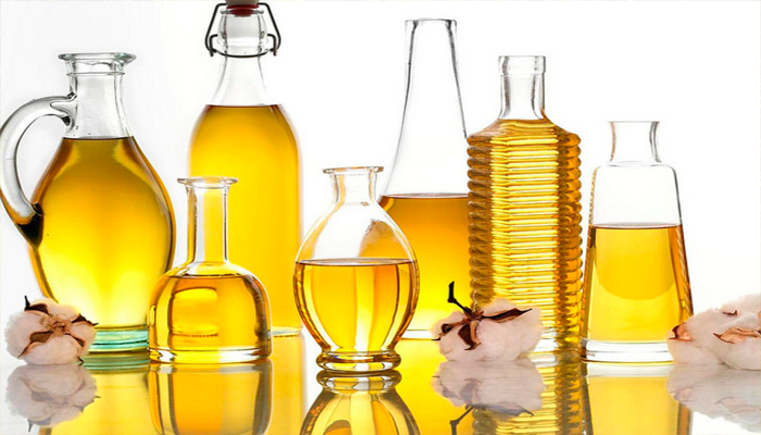 Máy ép dầu thực vật tốt nhất tại Hà Nội